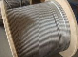 High Tensile Stainless Steel Wire