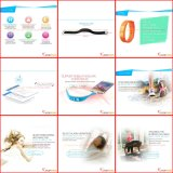 Plastic Pedometer, Promotion Pedometer, Hot Sell Pedometer