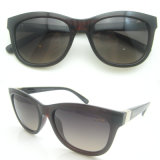 New Arrived Fashion Design PC Sunglasses with UV400