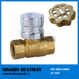 Wholesale Lockable Brass Ball Valve for Water Meter (BW-L07)