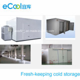 Combination Fresh Keeping Cold Room for Vegetables and Fruits