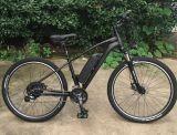 48V 350W Disc Brake E-Bike