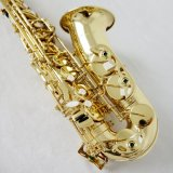 Sinomusik Professional Woodwind Grade Alto Saxophone for Sale