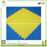 Colorful Cheap Best Price Foam PVC or EVA Play Mat