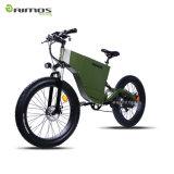 Aimos Best Selling Tde-06 48V 1000W Fat E Bike