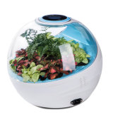 Am: 10 Micro Forest Ecological Desktop Air Purifier Mf-S-8700-B