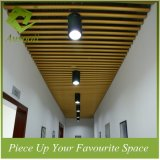 Aluminum Indoor Use Decarative Round Tube Profile Ceiling