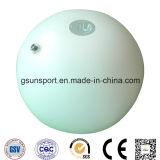Inflatable Giant LED Beach Ball Advertising Display Ball
