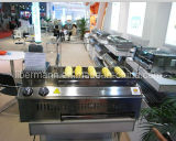 Embedded Automatic Rotate Smokeless Barbecue Stove (AE-102)