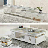 White Modern Marble Table for Living Room (8006)