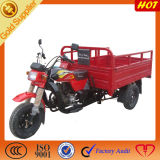 Chinese Motorcycles Cargo Adult Tricycles