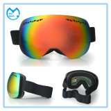 Double Anti Fog Interchangeable Lens Sports Eyewear Skiing Glasses
