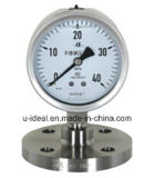 Pg09 Diaphragm Type Pressure Gauge