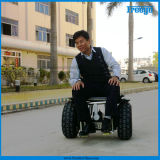 GPS Location Segway Self Balancing Wheelchair with Remote Control (F2S)