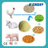 Small Capacity of 3-5tph Poultry Feed Set/ Animal Feed Plant