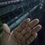 PP Knotless Bird Proof Net/Green Color Anti Bird