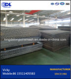 Factory Price 45 High Tensile Steel Crimped Wire Mesh