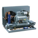 Air-Cooled Condensing Unit for Freezer Room