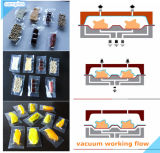 Automatic Food Vacuum Packing Machine (DLZ 320-520)