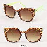 New Fashion Square Sunglasses