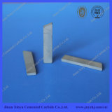 Oil Drilling Tool Parts Tungsten Carbide Wear Parts
