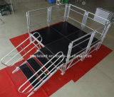 Cheap Movable Speach Platform with Red Carpet Assembly Stage