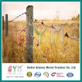 Barbed Wire Fencing Price / Single /Double Wire/ Security Fence