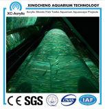 Customized Big Transparent PMMA Acrylic Fish Tank