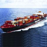 Ocean Freight Service From Shenzhen to Mexico, Buenaventura, Callao, Valparaiso, Iquique, Puerto