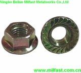 Collared Hex Nut DIN 6923 Gr. 8 Flange Nut