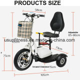 16inch 3 Wheels off Road Electric Mobility Scooter with 500W