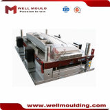 Plastic Cold Runner 2 Cavities Mold Injection Molding