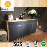 Popular Hot Selling Book Cabinet for Office Used (C6)