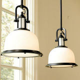 Simple Style Pendant Light for Home