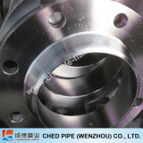 Stainless Steel Fored Big Plate Flange