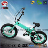 250W Fat Tire Electric Folding Scooter Lithium Battery Motorcycle