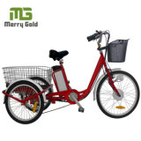 250W Big Size Three Wheel Electric Trike for Cargo Use
