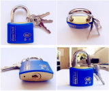 Hot Style Shengli Plastic Coated Iron Wire Drawing Finished Padlock