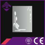 Jnh249 New Luxury Public Bathroom Mirror LED with Beauitful Patterns