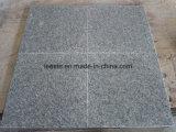 Cheap Light Grey G602 Building Material Granite Tile