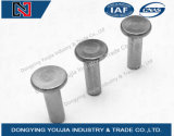 GB109 Stainless Steel Flat Head Rivets
