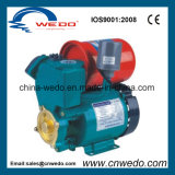 Gp-130auto Electric Self-Priming Water Pump (0.25KW/0.33HP)