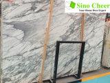 Polished White Slab Arabescato Marble Slab Tile for Decoration