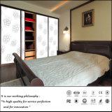 Sliding Doors Home Furniture Wardrobe as Bedroom Set (ZH-5107)