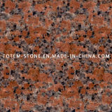 Cheap Polished G562 Maple Red Stone Granite Kitchen Tile Flooring