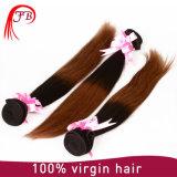 Wholesale Hair 100% Human Hair Extension Ombre Malaysian Hair