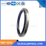 Rubber Dkb Hudraulic Oil Seal / Dust Wiper
