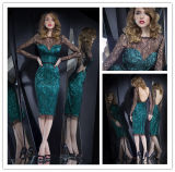 New Hot Sexy Black Lace Sheath See Through Satin Knee Length Long Sleeves Evening Gown 2014