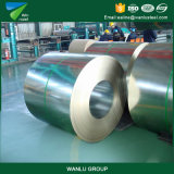 10years Production Experience Professional Manufacturer Galvanized Steel Gi