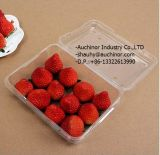 Multifunctional Transparent Food Blister Packing Box